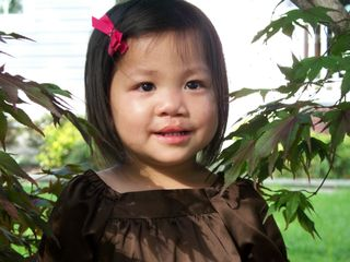 Alayna tree MD 2009